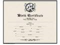 Sample picture of a birth certificate