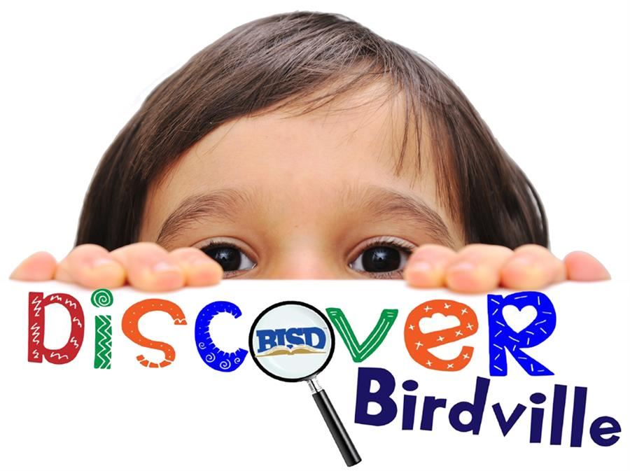 boy looking over onto Discover Birdville logo