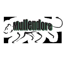 Alliene Mullendore Elementary / Overview