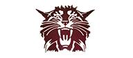 NRidge MS logo