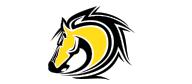 North oaks MS logo