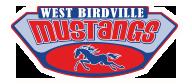 Academy at West Birdville Elementary